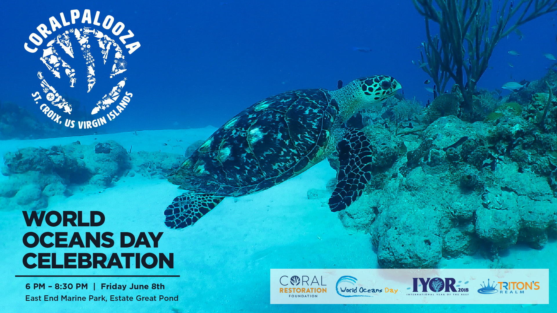Coralpalooza: St. Croix, USVI – World Oceans Day & IYOR Celebrations