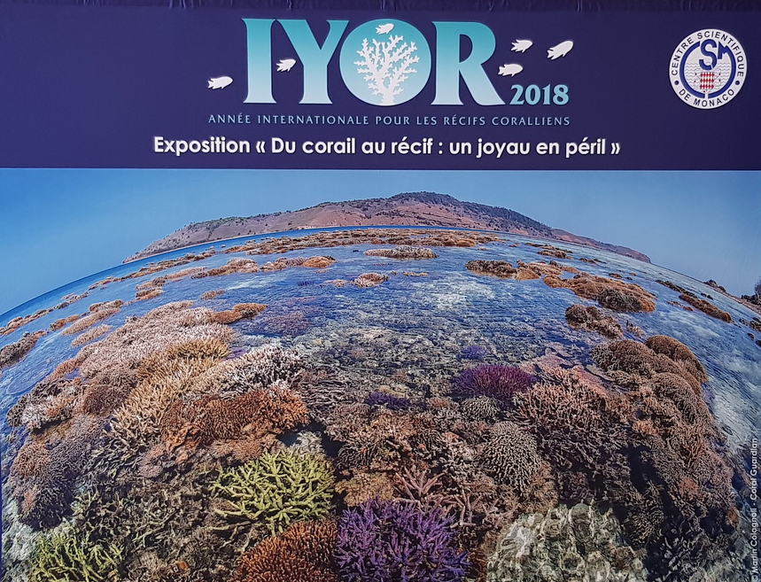From coral to reef: A jewel in danger photo exhibition, Monaco