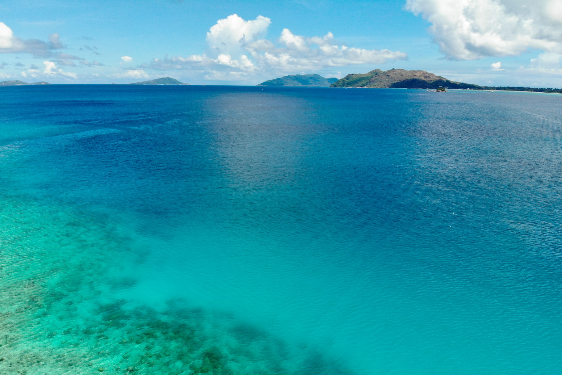 Reef scientists adapt ideas from investment world to assist coral reef conservation
