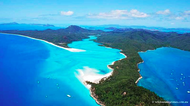 Call for artists – Whitsunday reef recovery & public art