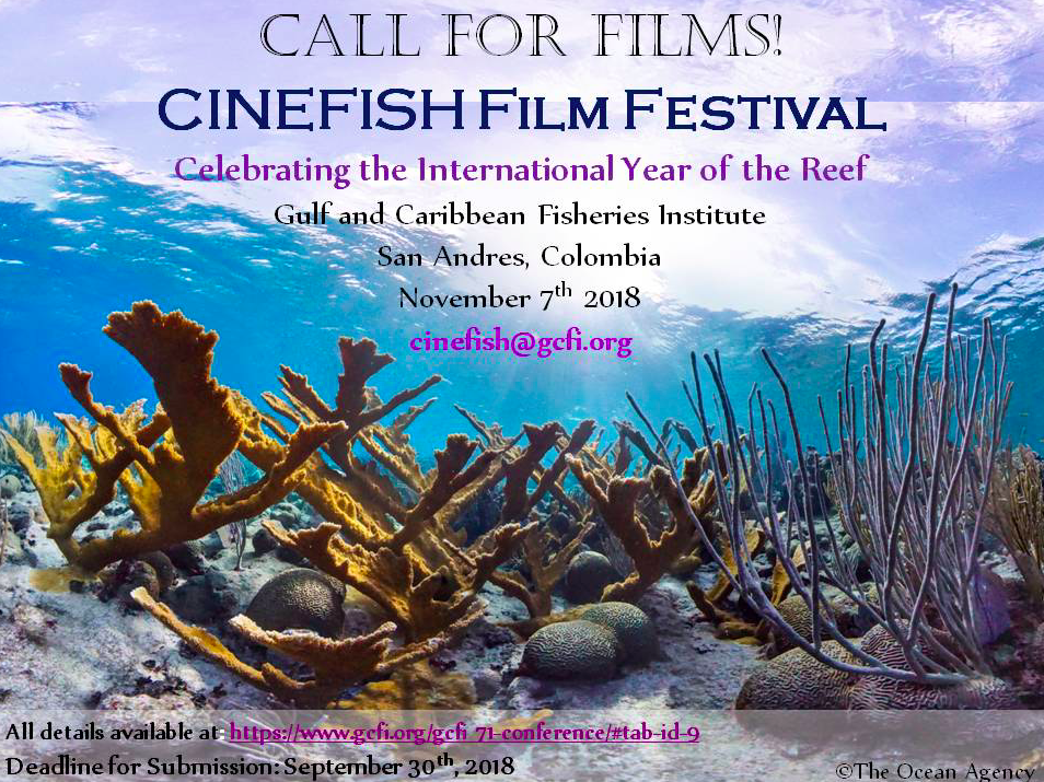 Call for short films celebrating IYOR 2018!
