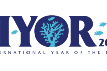 IYOR at the 14th Conference of Parties, Egypt