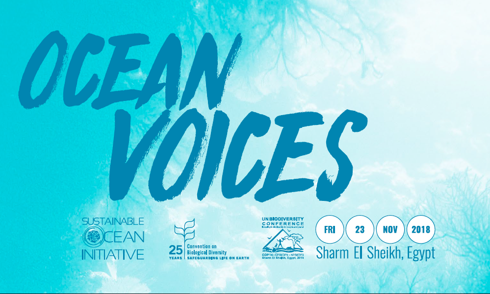 Ocean Voices: Voices of Coral Reefs, Egypt