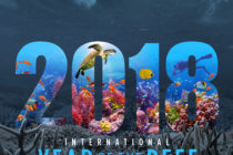 International Year of the Reef 2018 end of year report