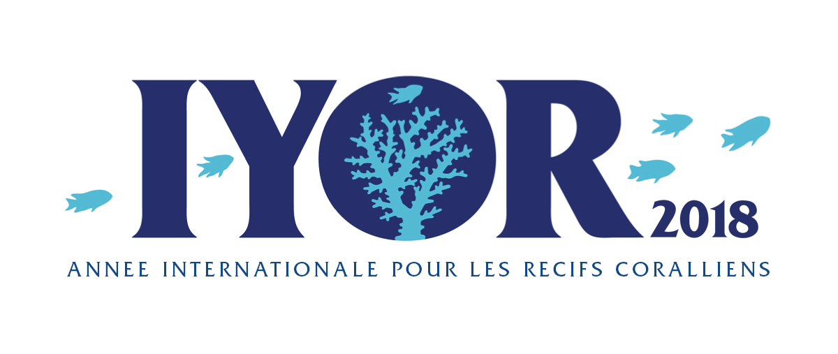 A summary of the French participation in the IYOR
